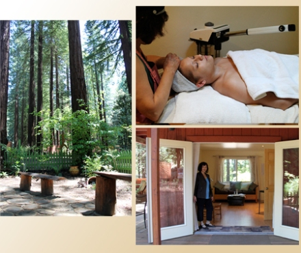 Mary Lia Skin Care in Occidental, just outside Sebastopol, CA